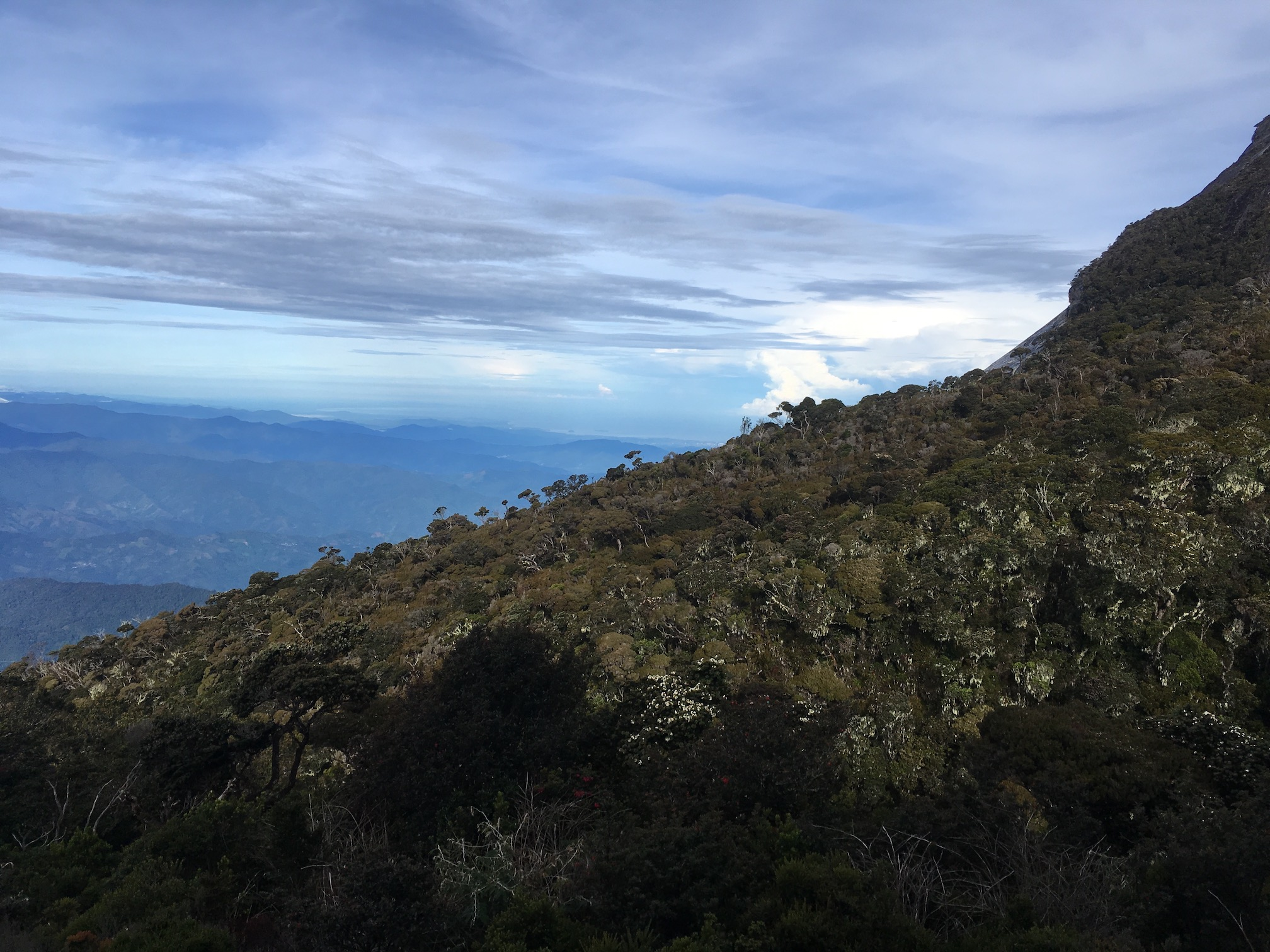 View from Mount Kinabalu.